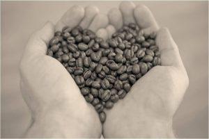 kaffeboenner-danner-hjerte-i-haender